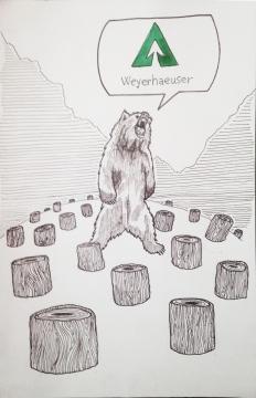 weyerhauser